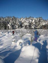 Skiing January 2010
